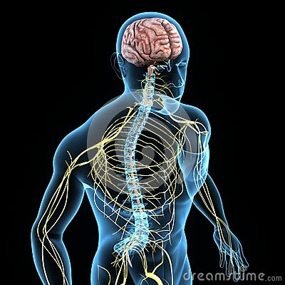 EMG paris, PES paris, PEM paris, PEA paris, potentiels évoqués paris, neurologue, paris
